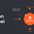 Amazon Flywheel